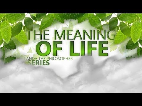 What is the Meaning of Life?? | Panda the Philosopher - http://LIFEWAYSVILLAGE.COM/meaningful-living/what-is-the-meaning-of-life-panda-the-philosopher/