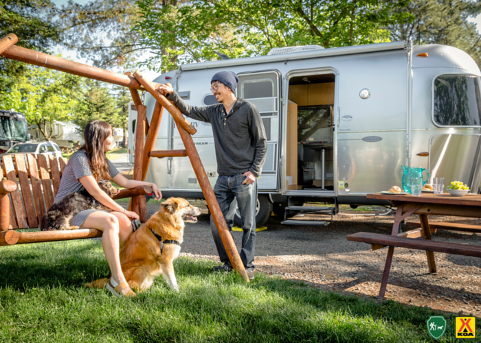 9 Expert Tips For Camping And Hiking With Dogs KOA