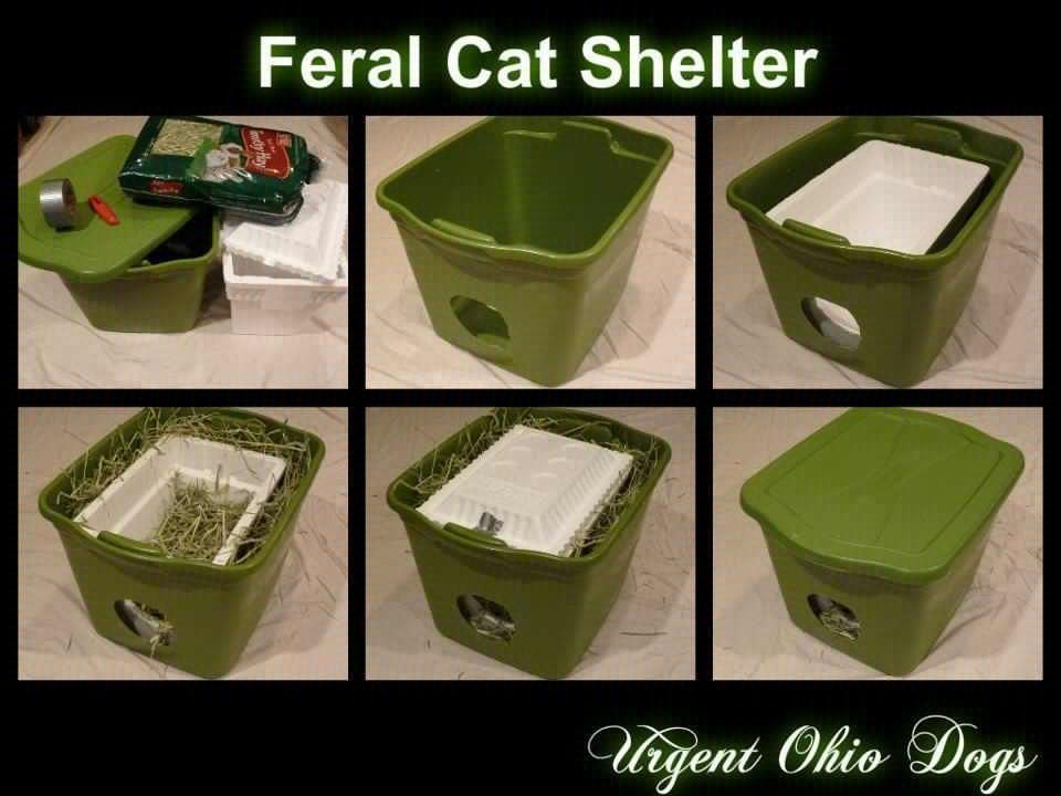 Feral cat shelter DIY Cat Shelters Pinterest Cats