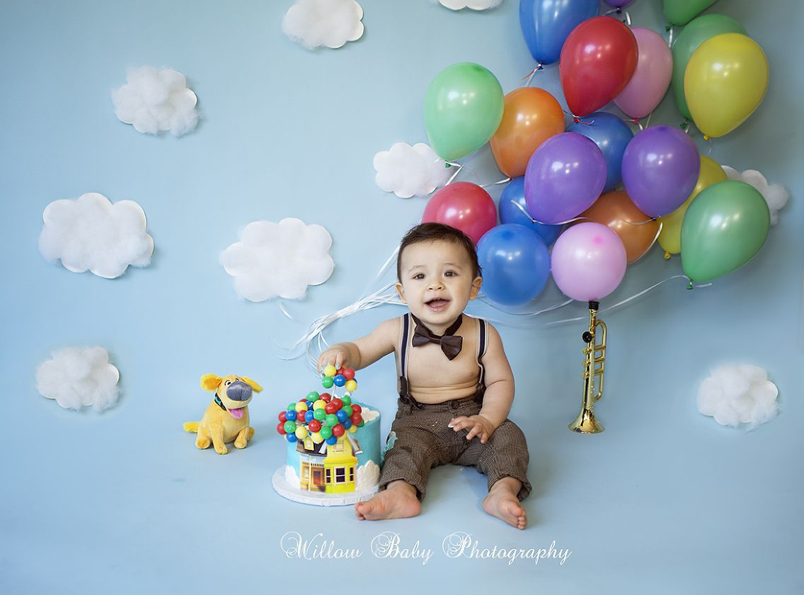 One Year Cake Smash Willow Baby Photography Half Birthday Baby Baby Boy Birthday Themes Baby Boy 1st Birthday Party