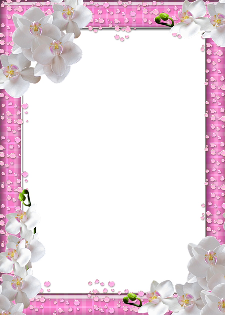 Cute Png Pink Photo Frame With White Flowers Gallery Yopriceville