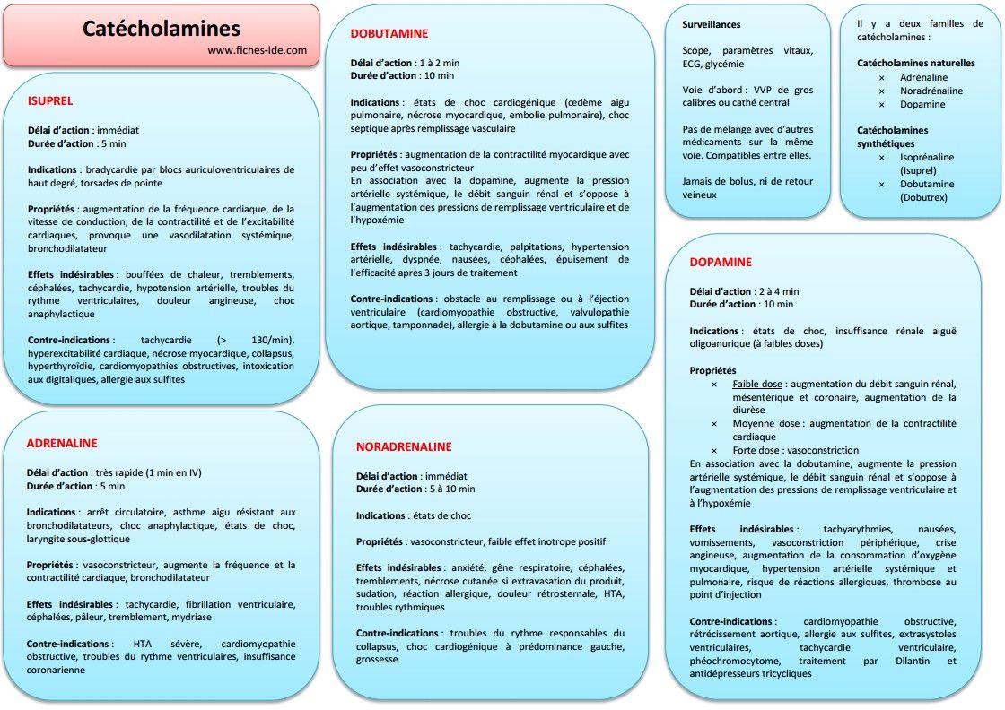 Catecholamines | Soin infirmier, Santé médecine ...