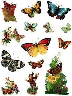 Vintage Images -- Butterflies and Blooms