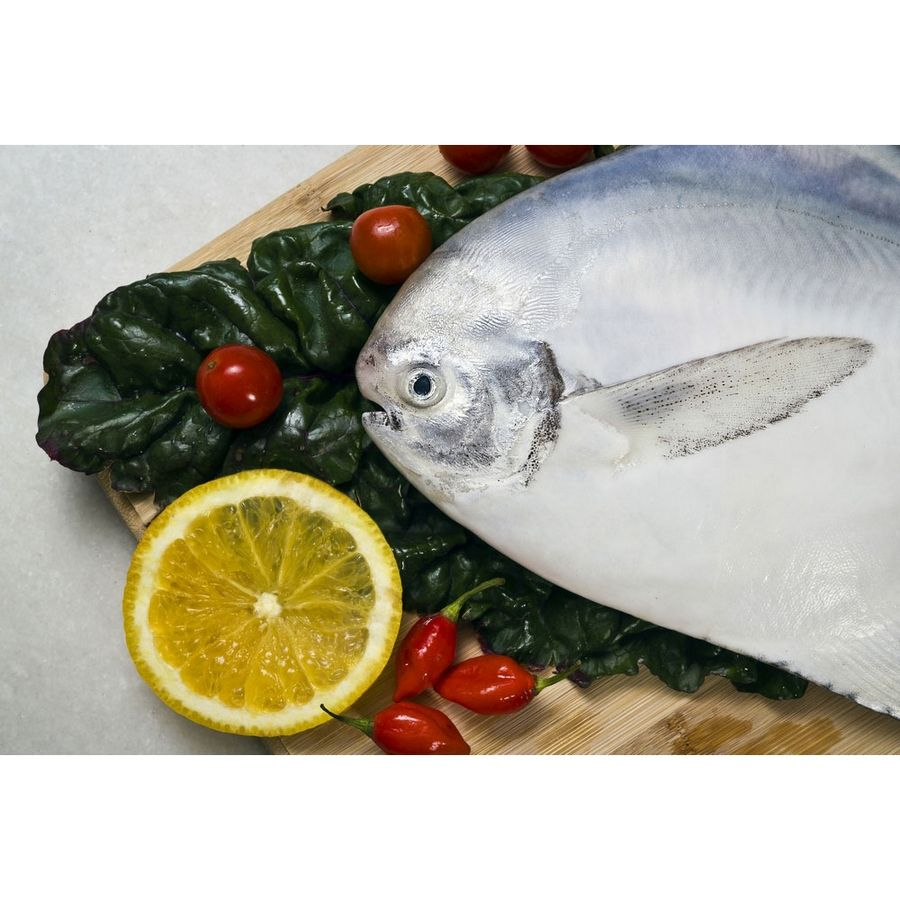 SILVER POMFRET;PRICE INR 220 Seafood online, Salmon fish