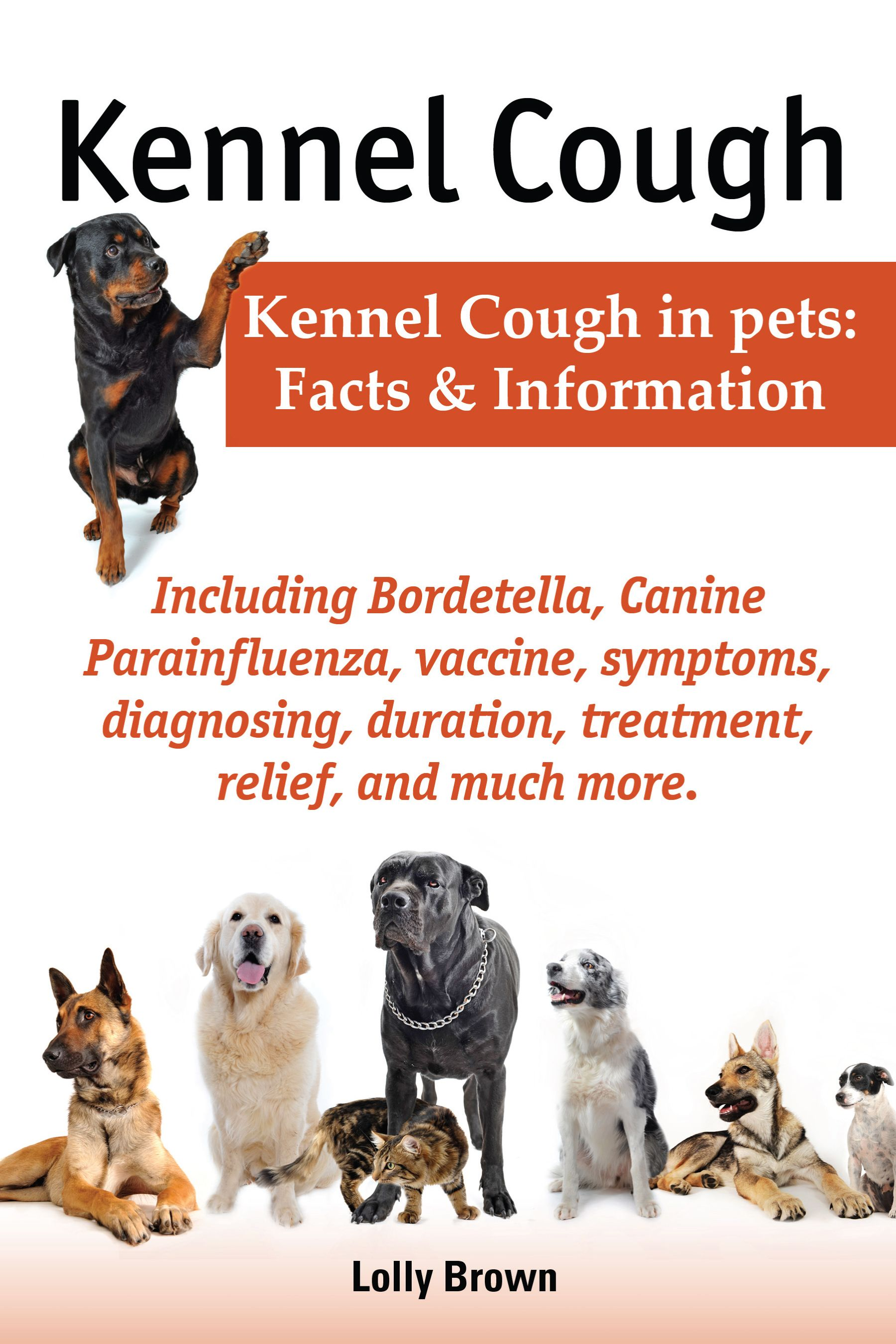 How to Treat Kennel Cough