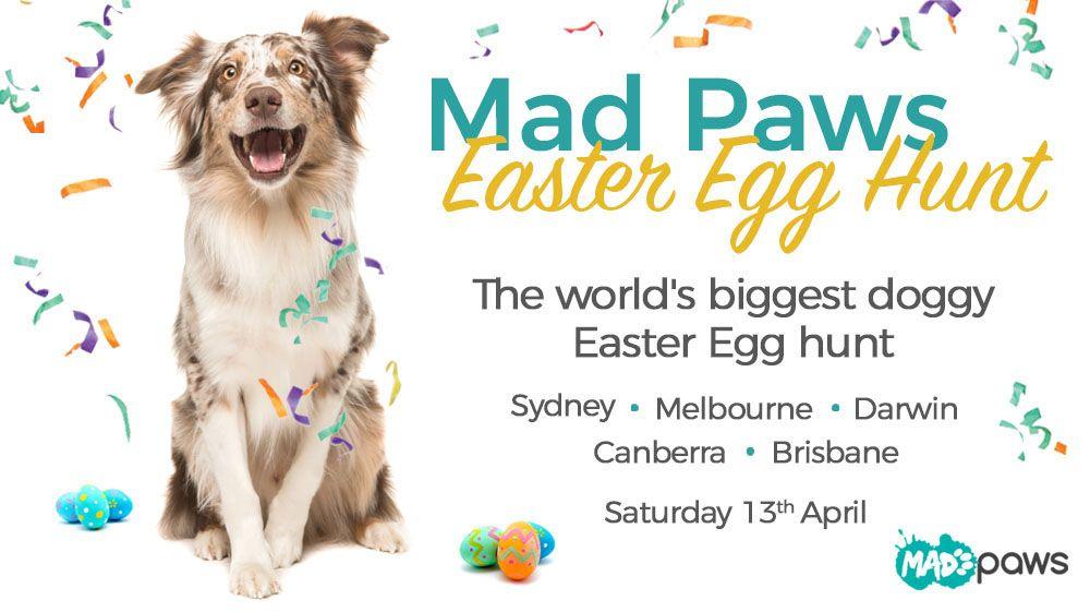 Mad Paws Dog Easter Egg Hunt 2019 April 13 Australian Dog Lover Dog Easter Eggs Egg Hunt Dogs Day Out