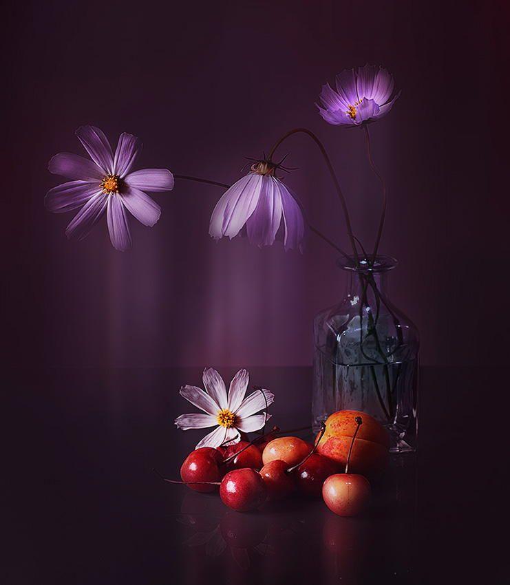 deep purple by Viacheslav Krasnoperov on 500px