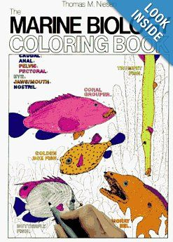 The Marine Biology Coloring Book Second Edition Thomas M Niesen 9780062737182 Amazon Com Books Coloring Books Marine Biology Animal Coloring Books