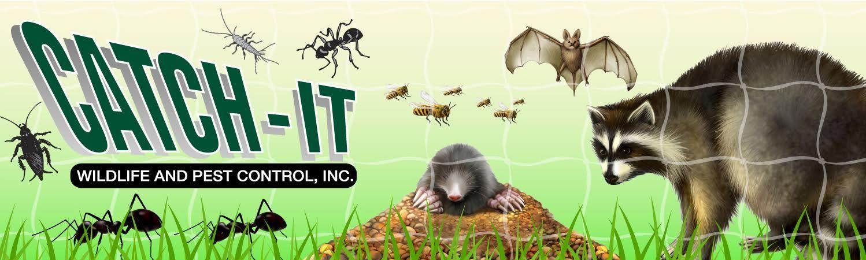 Catchit wildlife and pest control inc banner pest