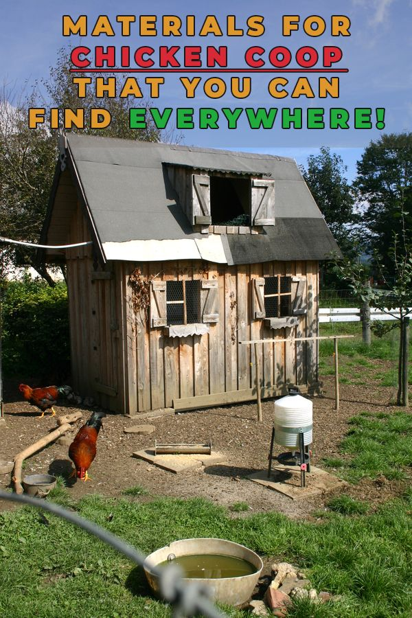 Materials For Chicken Coop That You Can Find Everywhere ...