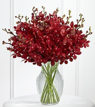 The FTD Spiritual Tribute Bouquet is a radiant display of sophisticated serenity. Rich red mokara orchids are brought together in a clear glass vase to offer a long-lasting bouquet that conveys you…