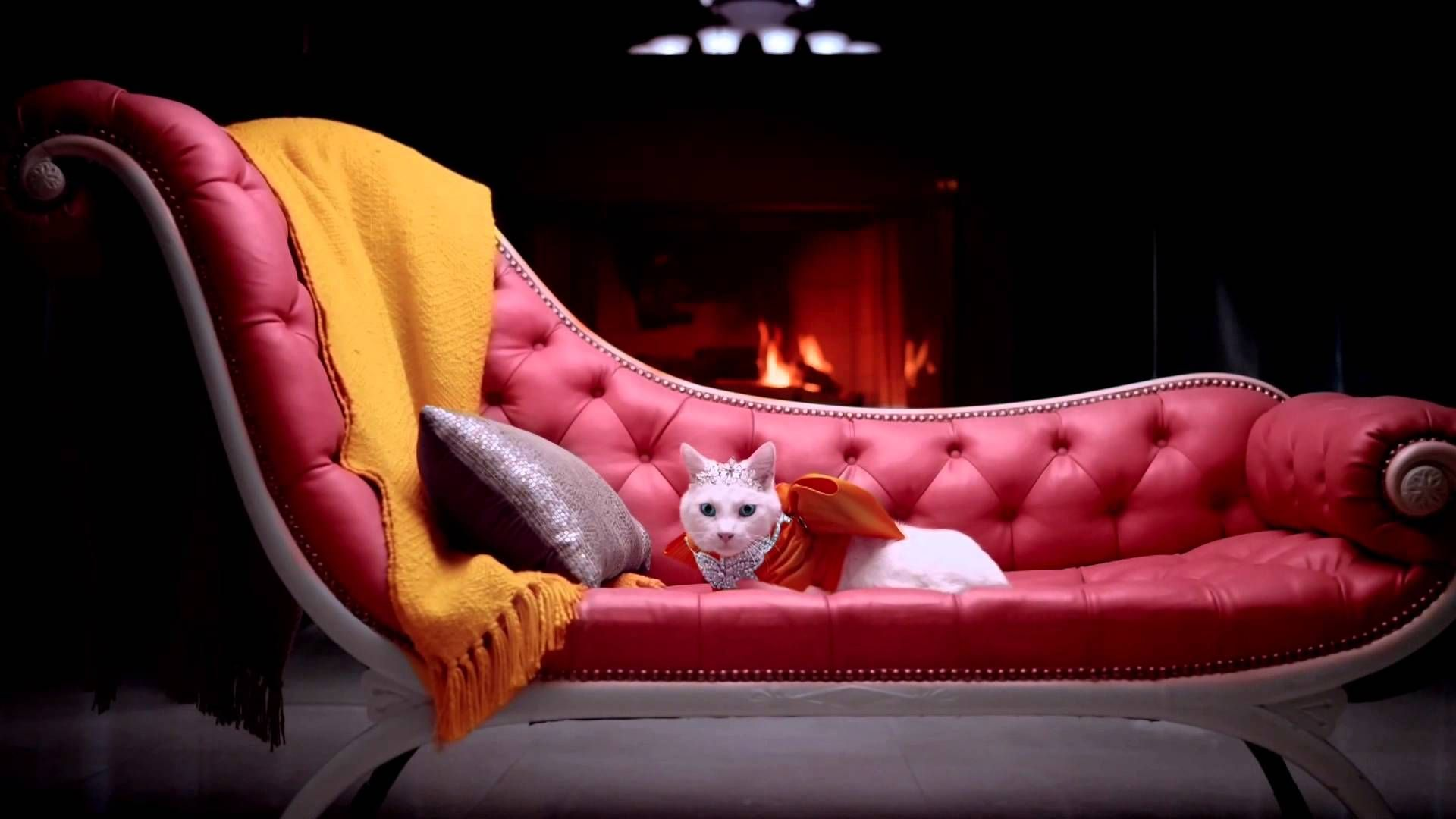 Marmalade The Spayed Cat I think this commercial is so