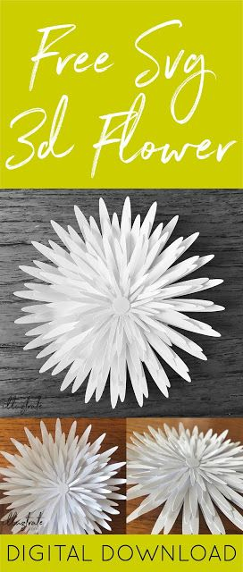 Free Templates & Tutorials For Making Paper Flowers With Cricut or Silhouette #largepaperflowers
