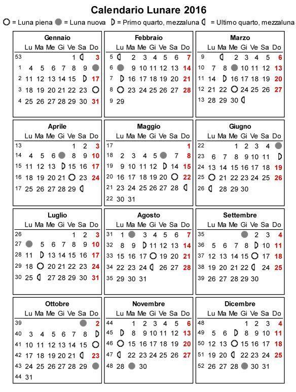 Femmina O Maschio Calendario Lunare.Calendario Lunare 2015 Orto Ortaggi Piante Tagli Di