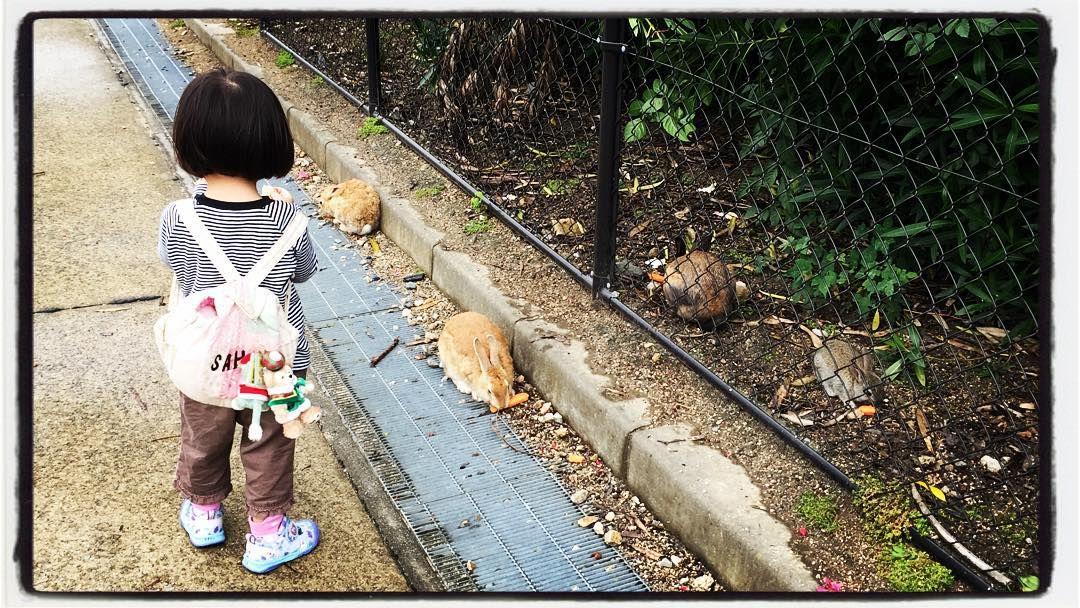 家族で大久野島にきています ウサギとたわむれてほっこりいやされています  こういう時間をたくさんつくることがQOL向上のためにはとっても大切  さああなたのステキなひとときはどこにありますか by sugi_pallat
