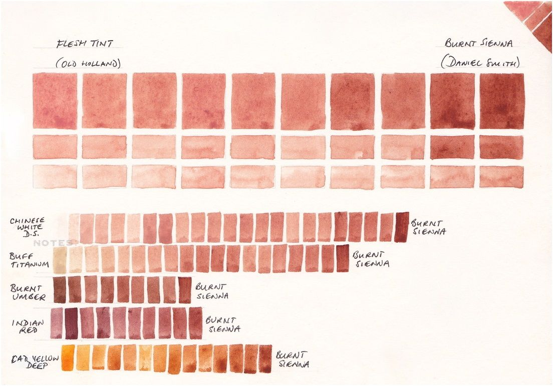 Watercolour Mixing Chart Burnt Sienna Flesh Tint White Buff