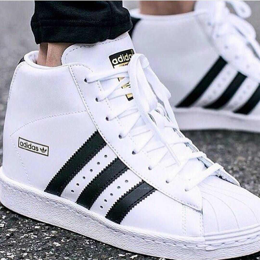 Adidas superstar en bota Whatsapp 3044686698 Luxury street ...