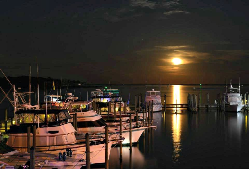 In for the night at the oyster bar restaurant and marina