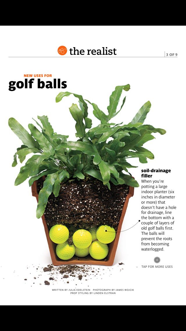 Golf Balls As Soul Drainage Filler On Indoor Potted Plants With No Drainage Hole From Real Simple Magazin Potted Plants Patio Plants Potted Plants Outdoor