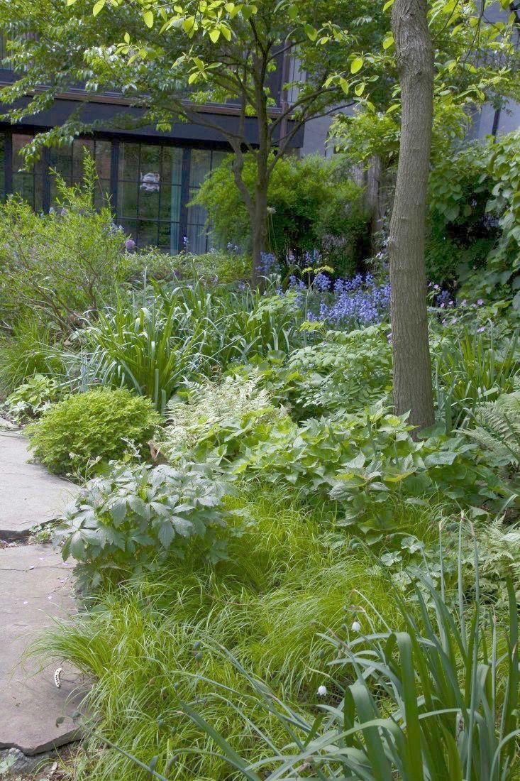 200 Planting Design Ideas Garden Design Garden Inspiration Landscape Design
