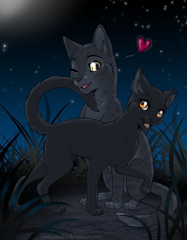 Warrior Cats - Gray Wing and Slate by RukiFox deviantart com on