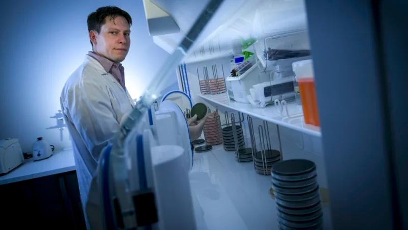 Our highsugar diet is breeding a new superbug No sugar