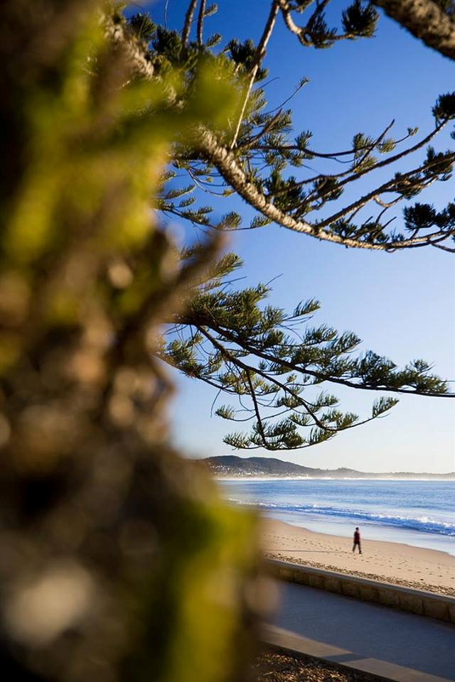 Our very own Terrigal