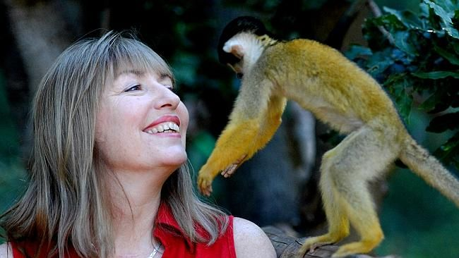 ZOOS SA chief executive and UniSA alum Elaine Bensted is credited with turning around its fortune after taking on the top job in 2012.. #unisaalumni