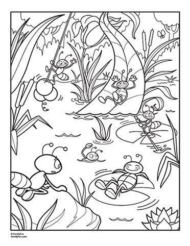 Spring   bugs   Summer coloring pages, Insect coloring ...