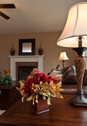 Staged Homes Peoria IL Real Estate Staging Home Organizer