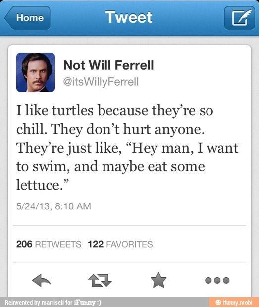 Lets swim and eat lettuce lol funny Will Ferrell tweet