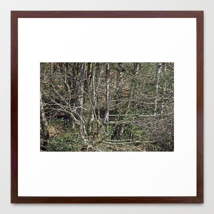 In the wild wood Framed Art Print#tree #wilderness #tree_magic