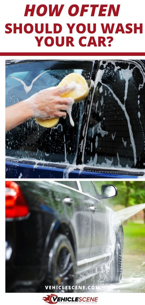 Just how often should you wash your car? If you don't do it as often as you need to, your vehicle will be a miserable mess (and so will you). On the other hand, if you do it too frequently and more than you should, you might damage your car exterior. Read this car cleaning guide to find out exactly how often you should wash your ride's exterior and interior, and tips on how you can know it's time for a shower. #carmaintenance #cartips #autodetailing #vehiclecare #carexterior #carinterior