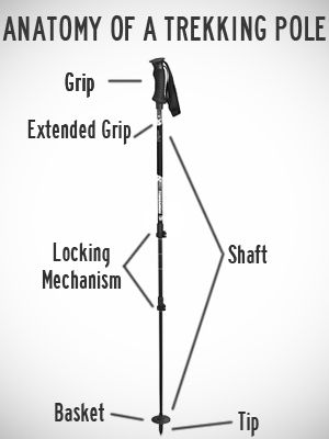 Anatomy Of A Trekking Pole. Walking ...