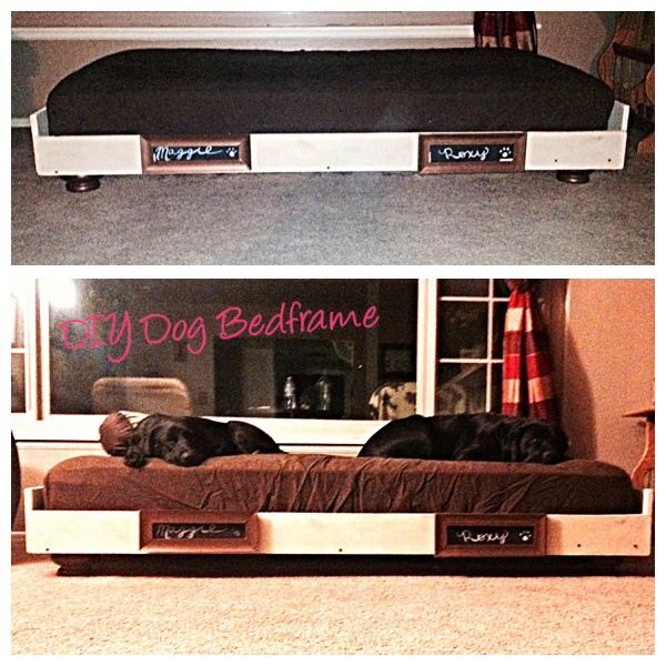 Diy Dog Bedframe Bed Twin Was Perfect For Two Large Black Labs Painted Frame To Match Coffee Table And End Tables In Living Room Dogbed