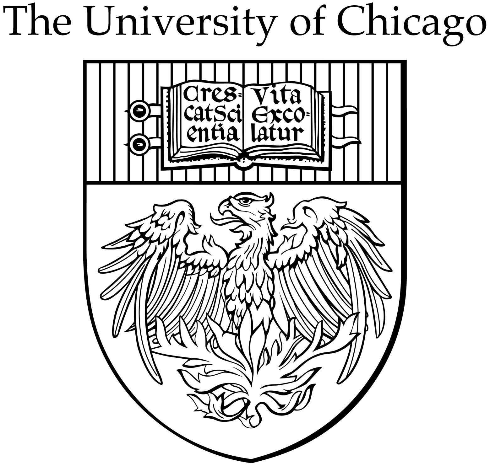 Thesis Statements For Argumentative Essays   John D Rockefeller Sr Endows  To University Of Chicago How Do I Write A Thesis Statement For An Essay also Reflective Essay Thesis   John D Rockefeller Sr Endows  To University Of  College Essay Papers