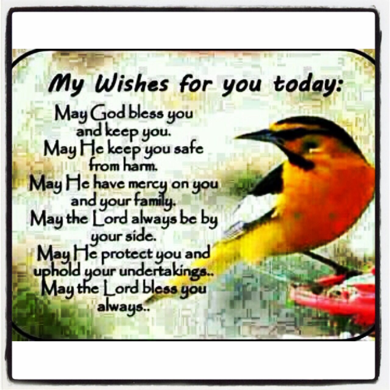 Early Morning Blessing Quotes: #My Wishes For You Today. May Your Day Be Filled With Love