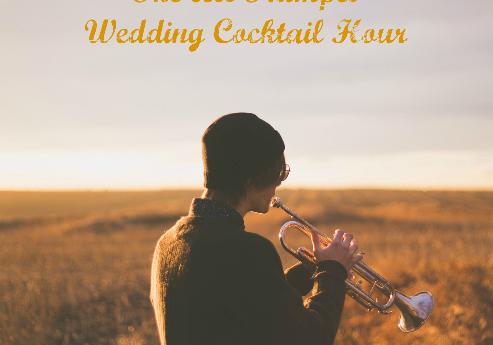 The All Trumpet Wedding Cocktail Hour Cocktails, Tv