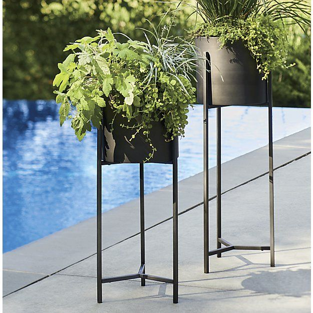 Dundee Bronze Floor Planter With Tall