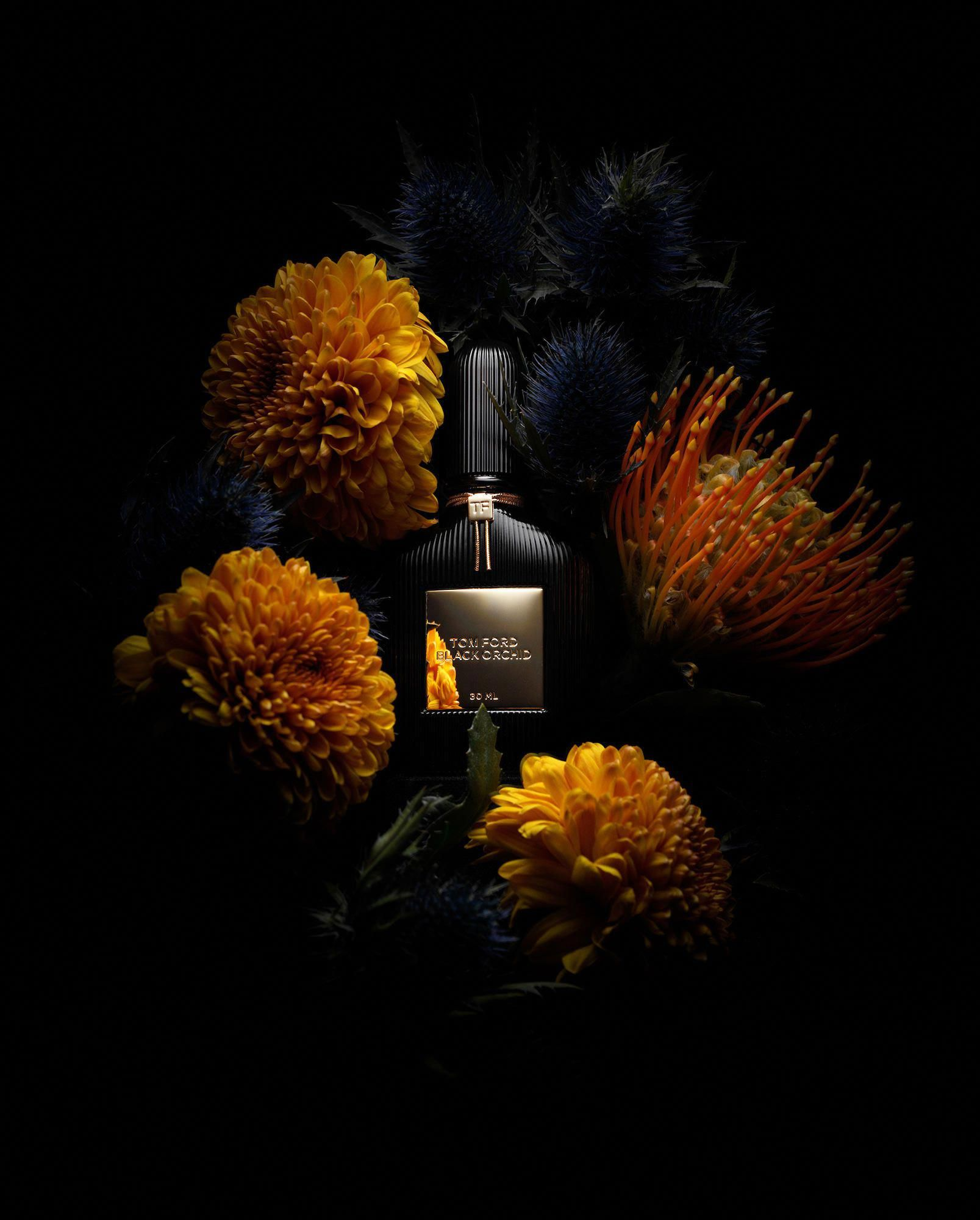 Fragrance Dark Flower Still Life Photography Photographed By