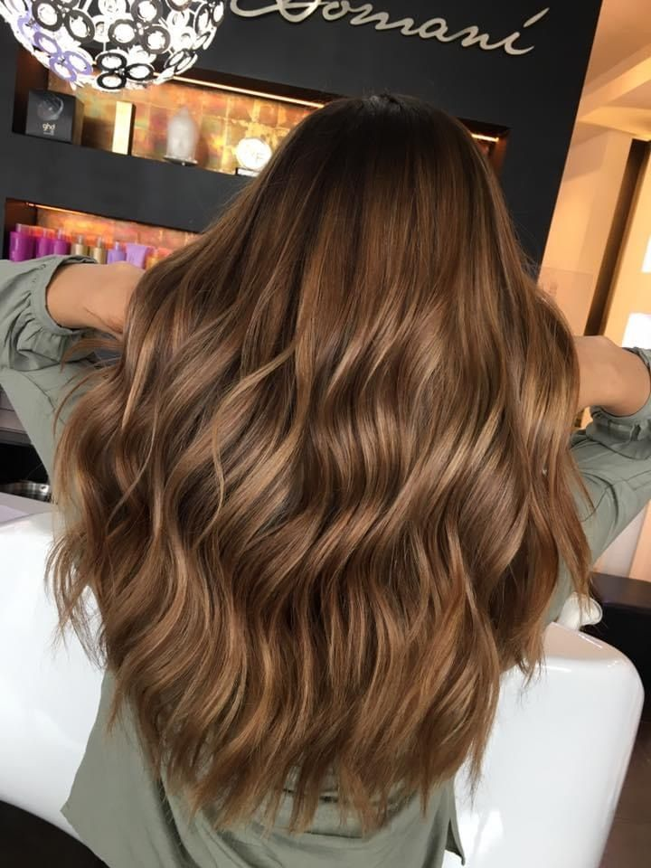 Warm Brown hair with highlights in 2020 | Braune haare mit highlights, Braune haare, Haare mit