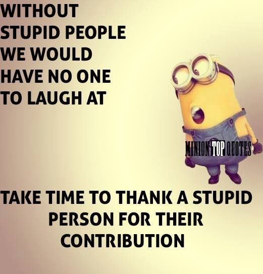 You Stupid, Stupid People, Minion Humor, Minions Quotes, Morning Quotes,  Too Funny, Funny Stuff, Funny Quotes, True Sayings