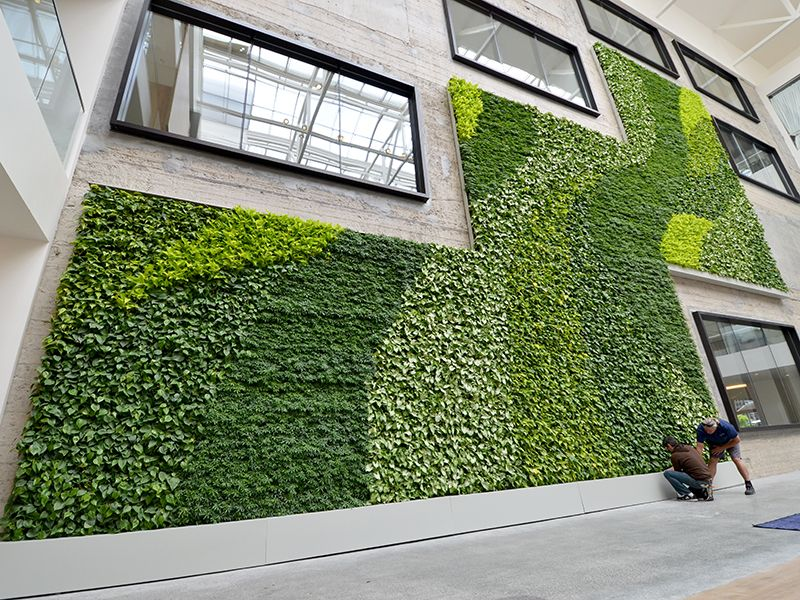 Beautiful McClendon Living Green Wall At Kent Denver School