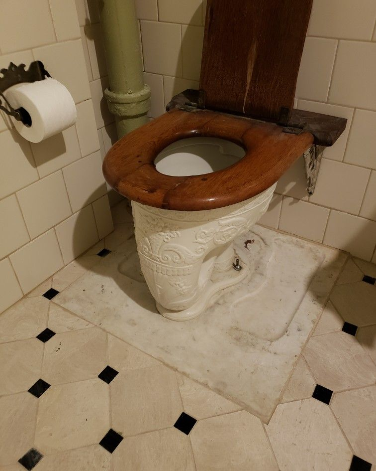 Victorian Toilet Here Is An Amazing Embossed Victorian Elephant Trunk Washout Toilet Bowl In The 1885 Eastlake Victorian Homes Victorian Toilet Vintage Toilet