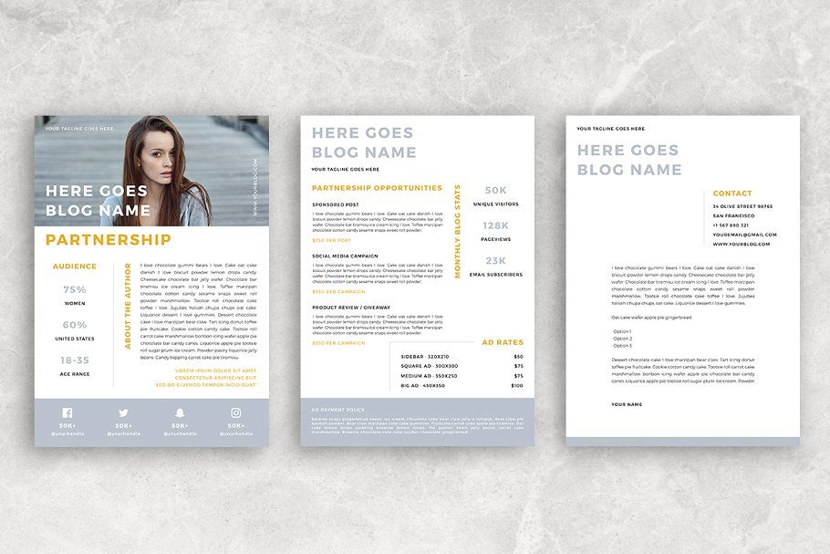 Canva Blog Media Kit 3 Pages