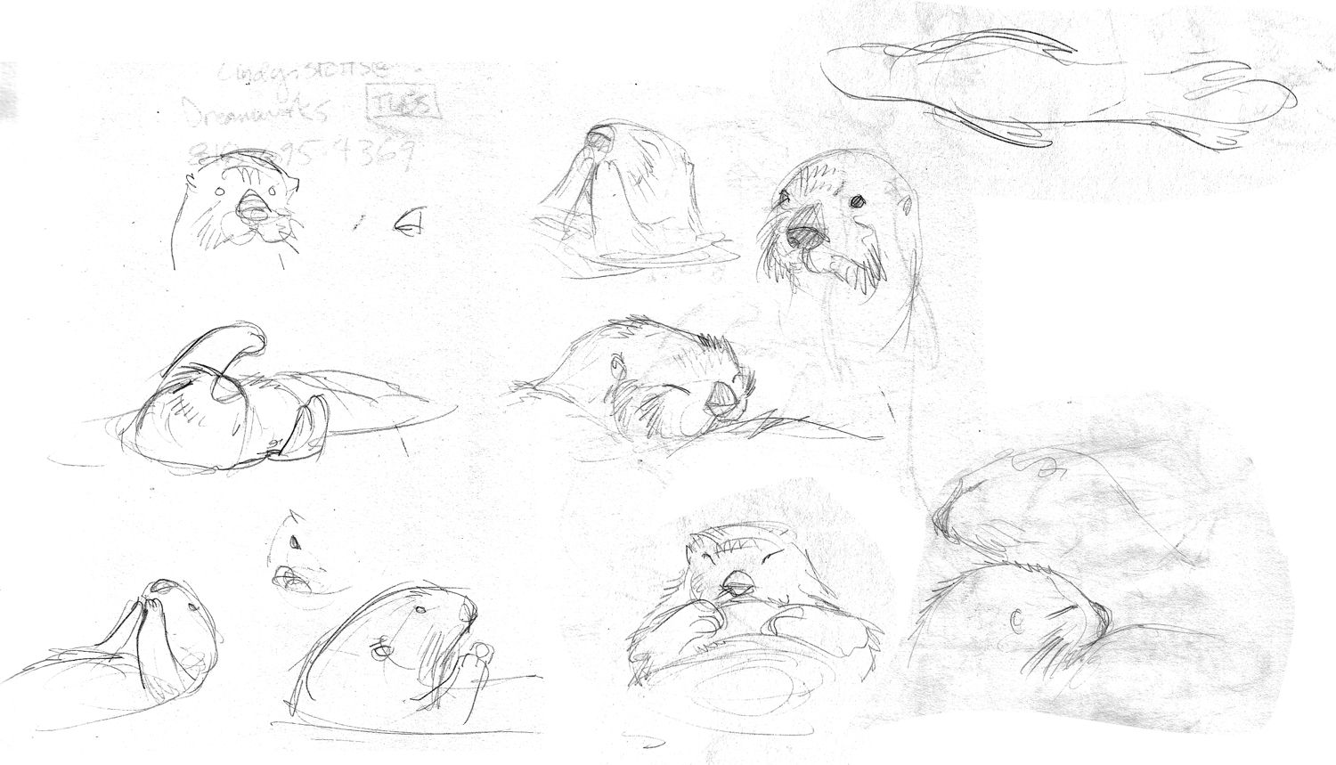 How To Draw Otters