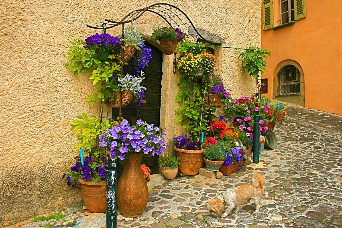 Уютные дворики частных домов фото