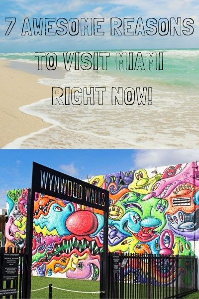 7 Awesome Reasons to Visit Miami Right Now | Florida Travel | Travel