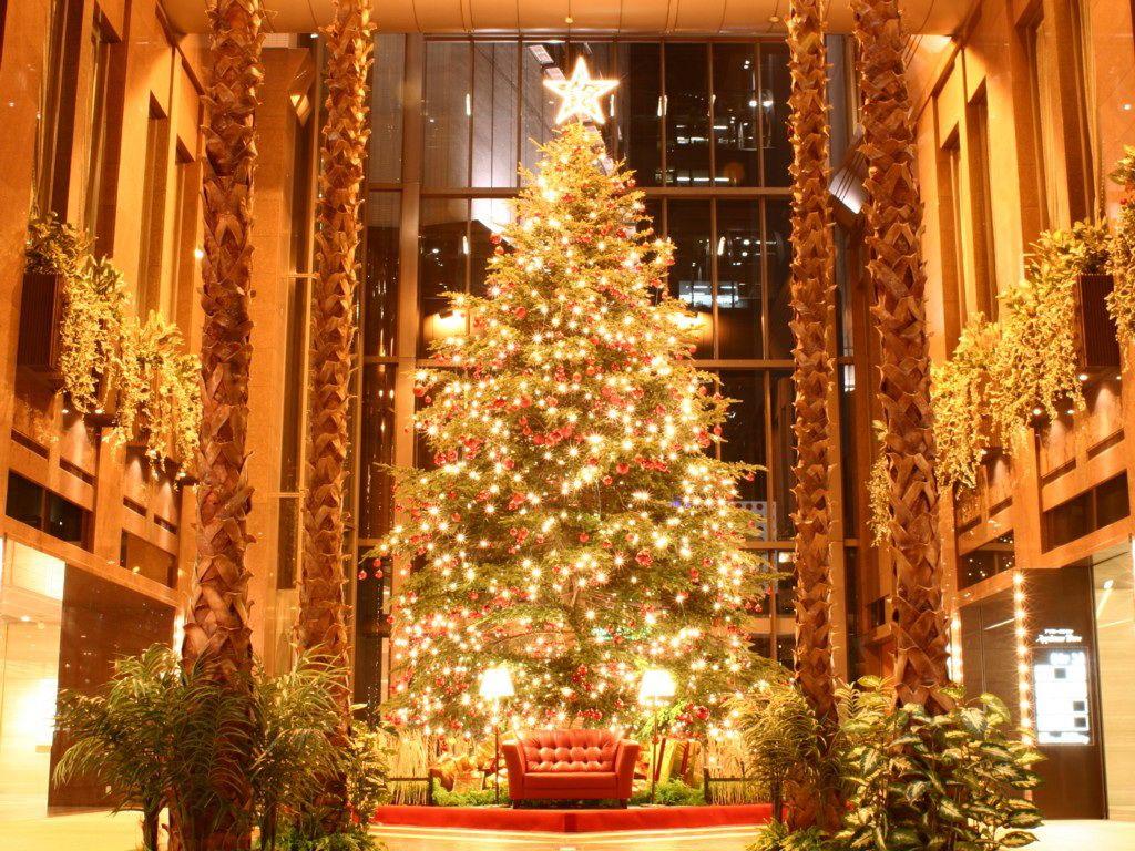 how to put lights on a christmas tree houzz - Best Way To Put Lights On A Christmas Tree