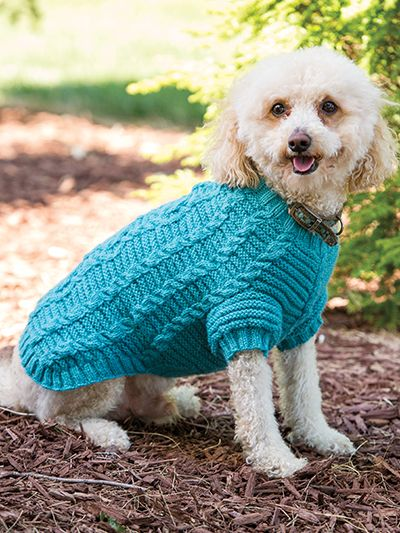 Free Knitting Pattern For Cable Dog Sweater Knitting And Crochet